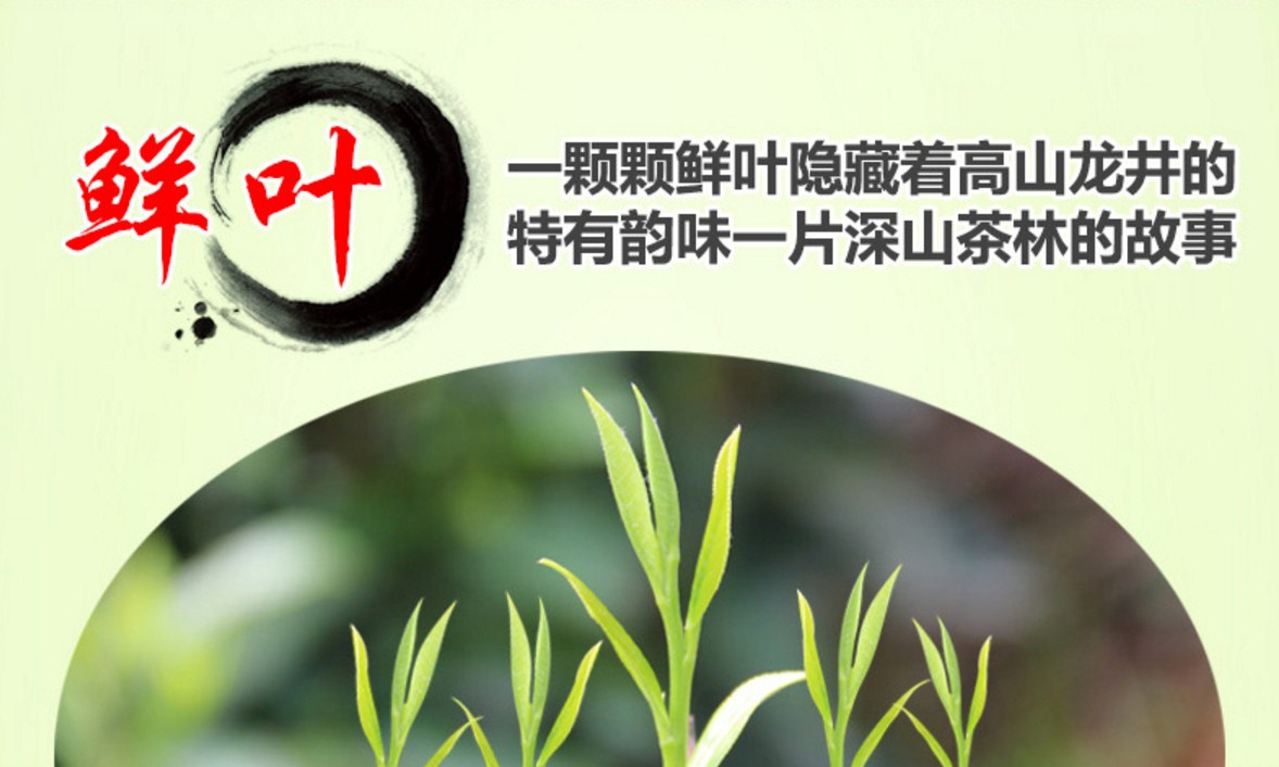 Зеленый чай Qing Cheng Tang Longjing tea (121-101) - 14