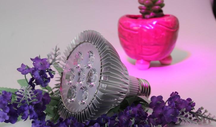 Светодиодная лампа для роста растений WEGA-WAN-P18-E27-5W-18W (112-103) - 9