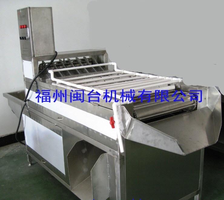Машина для очистки куриных яиц МТ-200-3 (111-126) - 2
