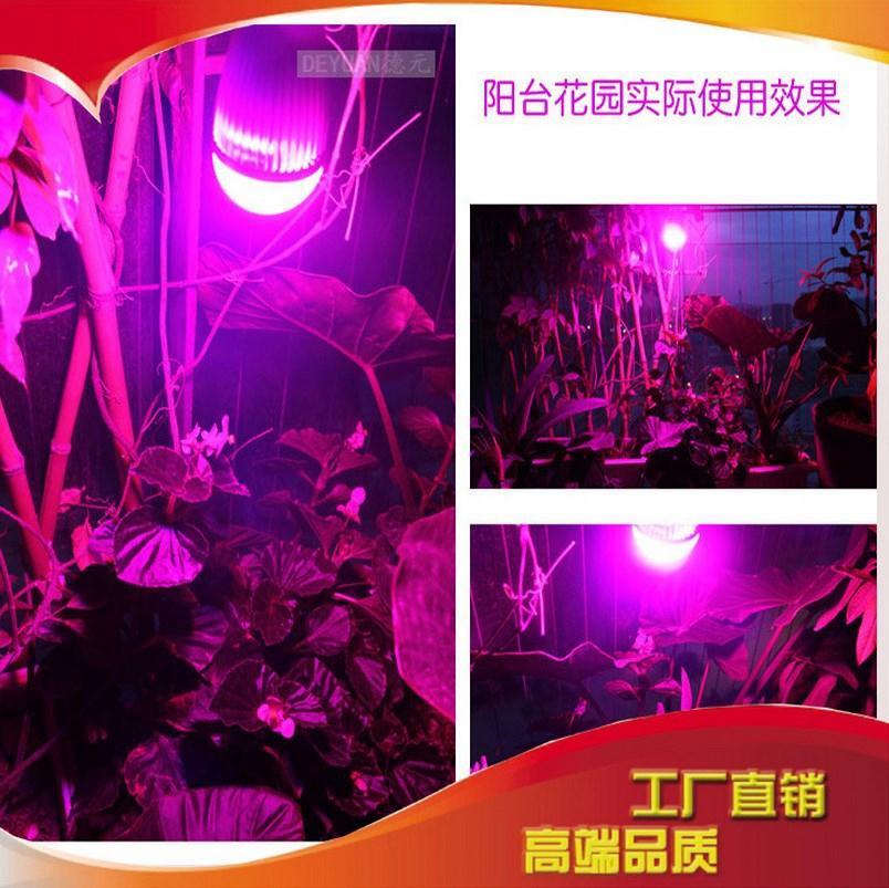 Светодиодная лампа для роста растений LED Judeyuan JDY-ZYD-013 (112-110) - 2
