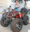 Квадроциклы - 6