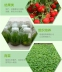 Светодиодная лампа для роста растений WEGA-WAN-T8120-T8-9W-36W (112-102) - 10