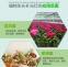 Светодиодная лампа для роста растений Birui Te 1321-40W-80W (112-121) - 13