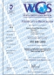 Станок для обжима РВД SAMWAY P32Q (108-147) - 4