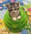 Игрушка для кошек Douges Tower of Tracks (128-108) - 1