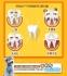 Косточки для чистки зубов Mr.Bear (128-107) - 3