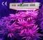 Светодиодная лампа для роста растений HYG05-MINI-100X3W-W (112-105) - 6