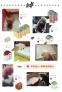 Впитывающие пеленки для собак Mr. Bear (128-102) - 3
